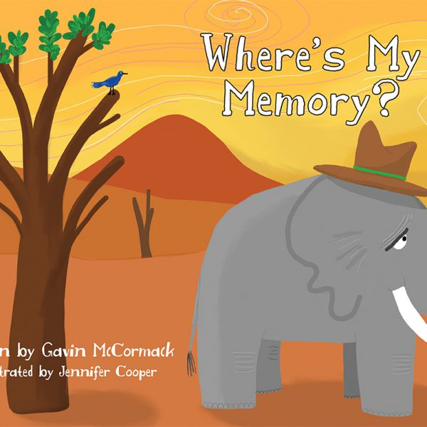 Wheres my memory ?